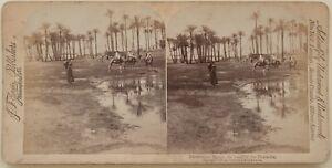 Egitto Scenic Piramide Foto Stereo Vintage Albumina 1896