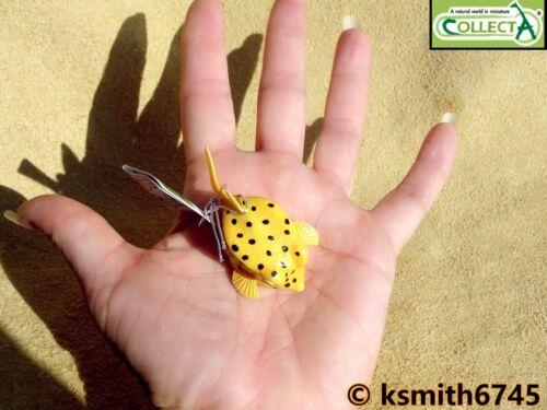 Collecta petit boxfish Jouet en plastique Wild Sea Marine Ocean Animal BOX FISH New
