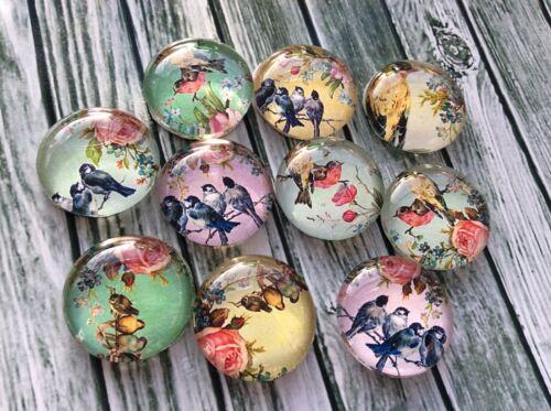 25mm Shabby Floral Pájaros Hecho a Mano cúpula Cabujones X 5 Hobby Craft Joyería Hágalo usted mismo