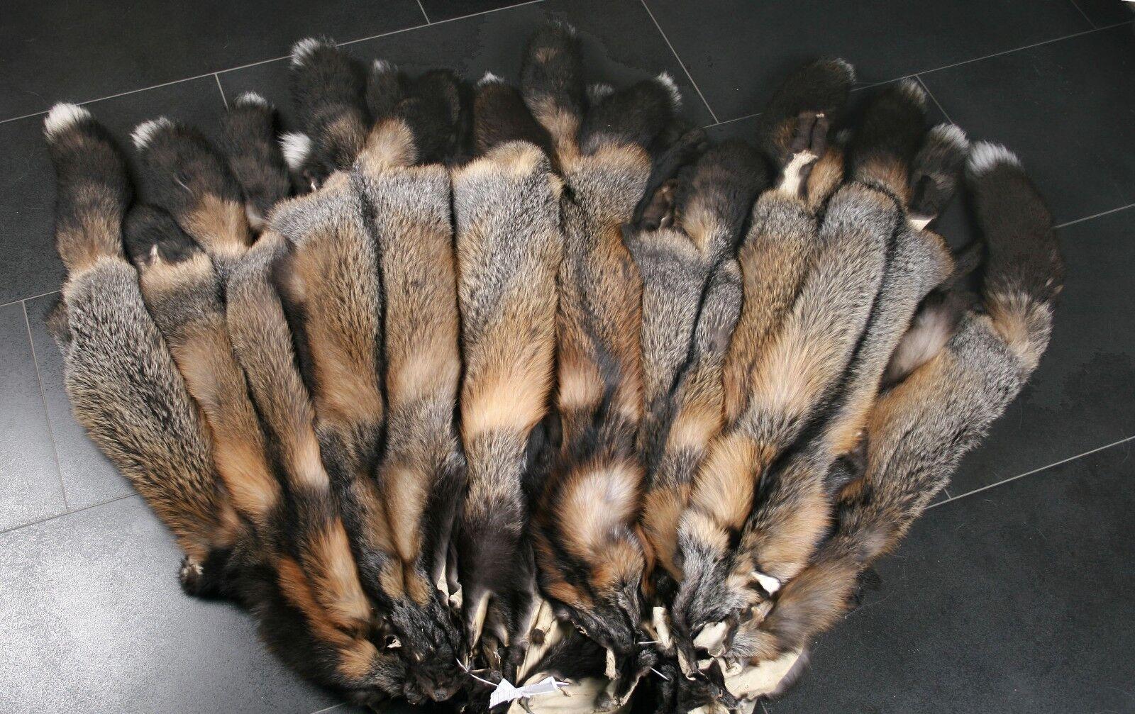 5710 Golden Cross Fox skins from Scandinavia | Sale Online  Online  Online  15a75b
