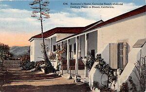 CUMULOS-RANCH-CALIFORNIA-RAMONAS-HOME-CHOWING-CENTURY-PLANT-POSTCARD-c1910s