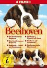 Beethoven - 6 Movie-Set/Teil 1-6  [6 DVDs] (2011)