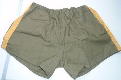 Steady Czech Military Army Gym Sports Running Or Boxer Shorts Kurze Hose Mint Condition Men's Clothing Militaria