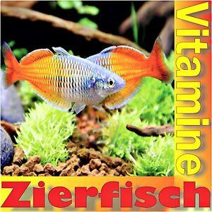 Poissons d'ornement Vitas 5 litres de vitamines aquariums de silures Conditionneur d'eau Salmler Guppy