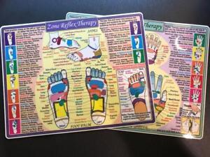 Zone-Reflexology-Hand-and-Foot-Laminated-8-034-x12-034-Chart