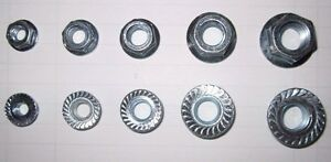 SERRATED FLANGE LOCK NUT ZINC 1/4-20 5/16-18 3/8-16 7/16-14 1/2-13 COARSE 500PC