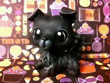 Midnight Collie Dog Halloween * OOAK Hand Painted Custom Littlest Pet Shop