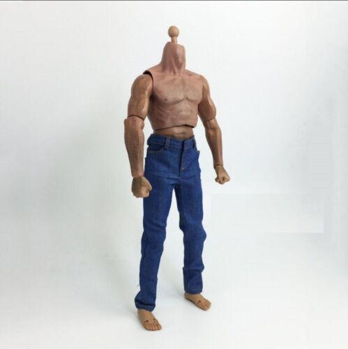 """1//6 Jeans bleu coupe Slim homme 12/"""" Figure HOT TOYS PHICEN étroites épaules ❶ USA ❶"""