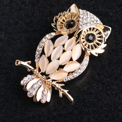 Owl Brooches Bouquet Vintage Wedding  Scarf Pin Up Buckle Broches  R