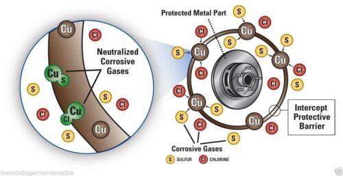 Coin Slab Holder Storage Box Lighthouse INTERCEPT Shield IBSL50 Capsule Slabs