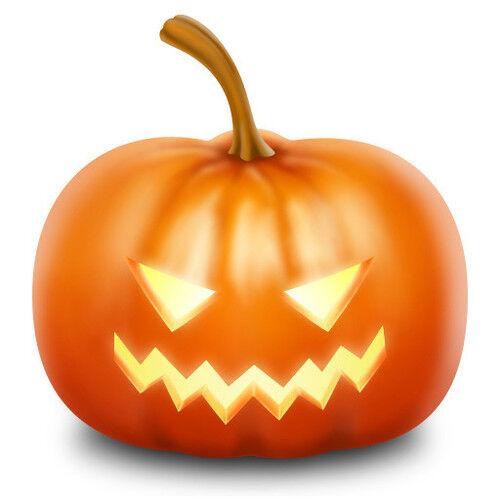 "30 Seeds Orange /""Jack o lantern/"" Pumpkin Seeds Organic Heirloom Halloween"