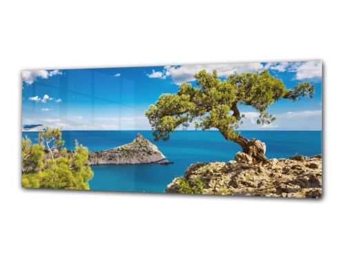 Glass Print Wall Art 125x50 cm Image on Glass Decorative Wall Picture 27211758