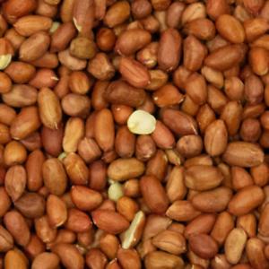 Peanuts for Bird Feeding - 15kg Bulk Buy
