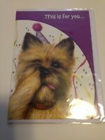 2 Two Funny Dog Terrier Nose Picker Pick Birthday Cards Gift Card Just For You