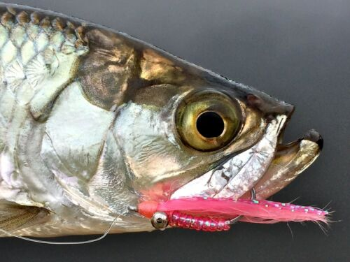 Bonefish Permit Trout Redfish Perch x 6 Fly Fishing Flies Crazy Charlie Pink