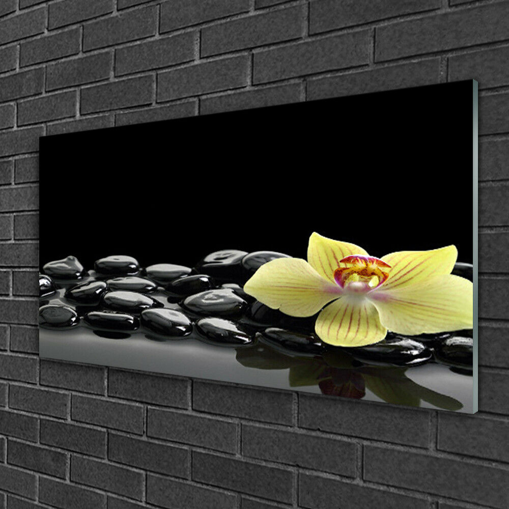 Print on Glass Wall art 100x50 Picture Image Flower Stones Kitchen