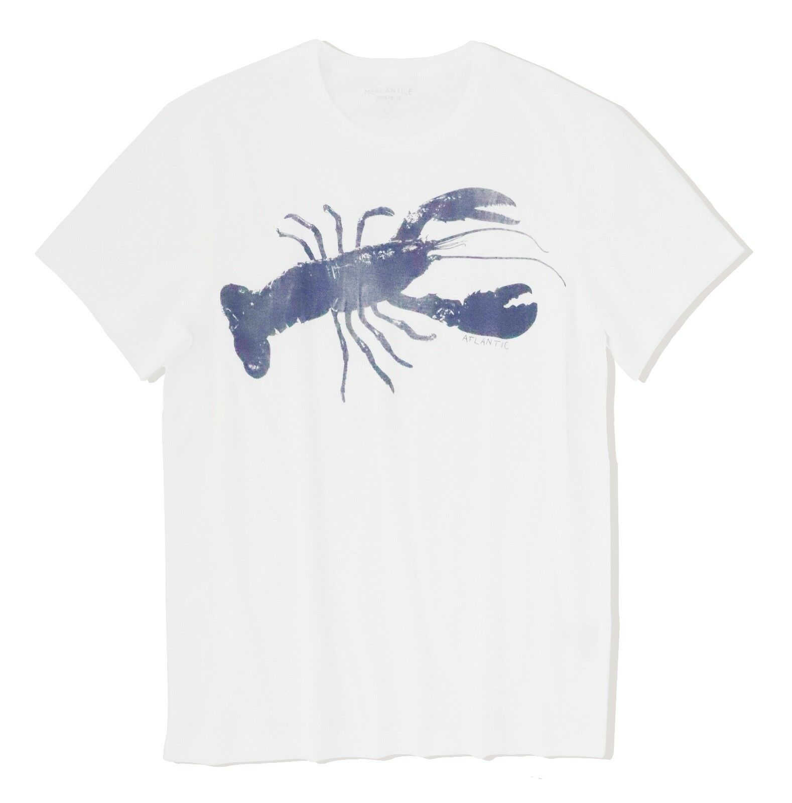 Levelwear NHL SAN JOSE SHARKS Icon T-Shirt NEU/OVP Fanartikel Eishockey
