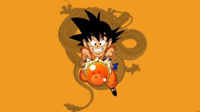 Anime Dragon Ball Dragon Ball Z Goku Silk Fabric Poster 24x14 Inch Ebay