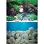 Seaview-Quality-Aquarium-Fish-Tank-18-039-039-Tall-Background-Range-Picture-Backing thumbnail 10