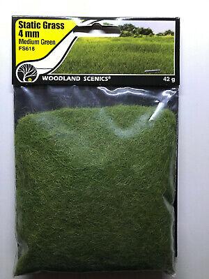 Woodland Scenics FS613 Static Grass Dark Green 2mm für Landschaftsgestaltung