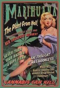 Marijuana-Plant-From-Hell-Cannabis-Plaque-Plaque-Etain-Signer-20-X-30-cm-FA0401