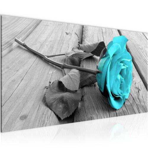 WANDBILDER XXL BILDER Blumen Rose VLIES LEINWAND BILD KUNSTDRUCK 204412P