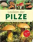 Lexikon der Pilze von Hans W. Kothe (2015, Gebundene Ausgabe)