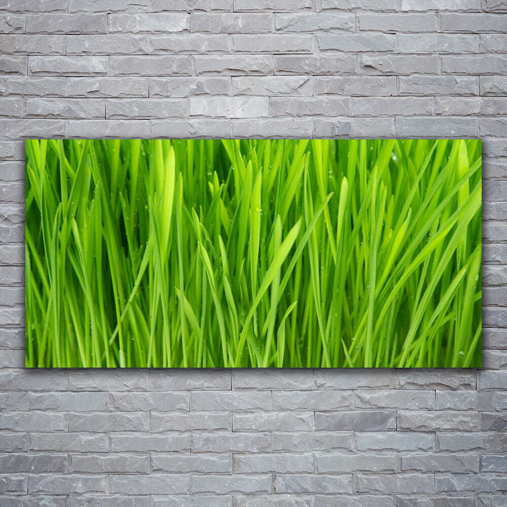 Verre Imprimer Wall Art Image 120x60 photo Weed Floral