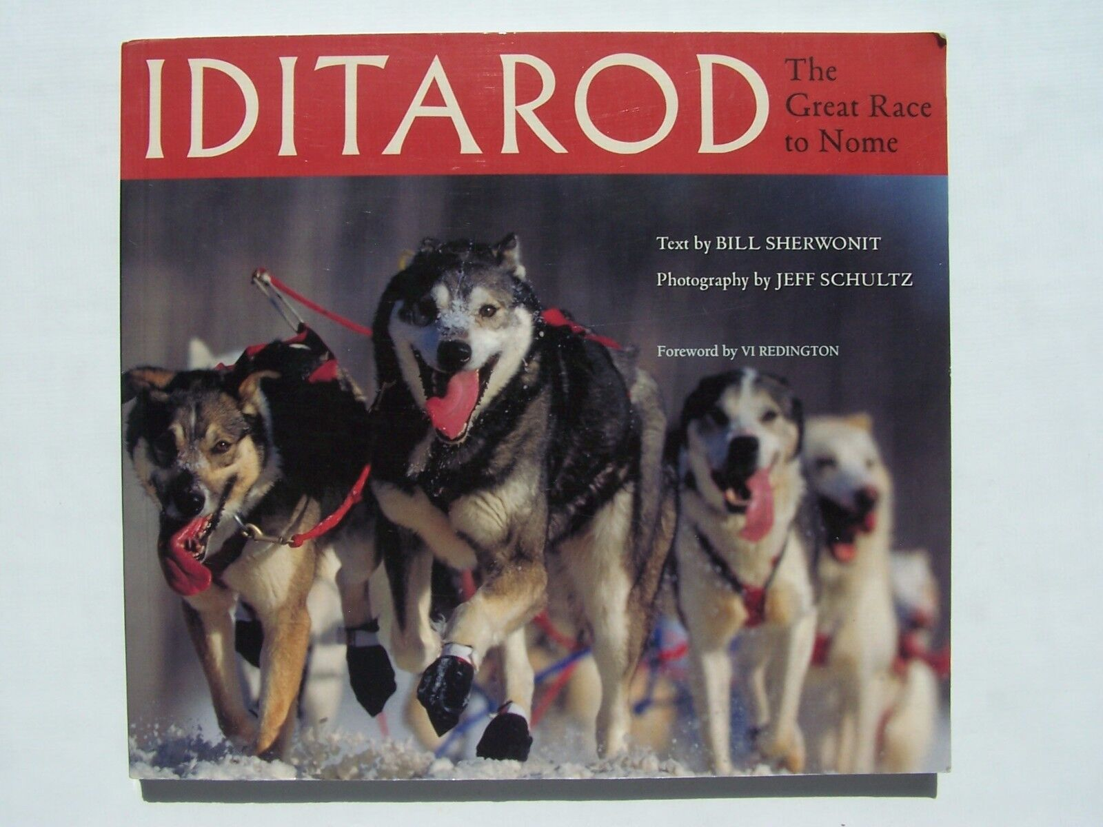 Iditarod: The Great Race to Nome Paperback Bill Sherwon