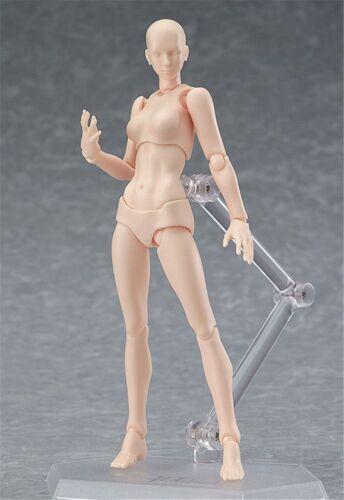 Artist Movable Male Female Joint Figure Body Models Mannequin 13cm Action Model