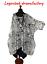 Lagenlook-EDEL-Ballon-Kleid-Tunika-SPITZE-schwarz-weiss-52-54-56-58-60-62-XXXXXL Indexbild 1