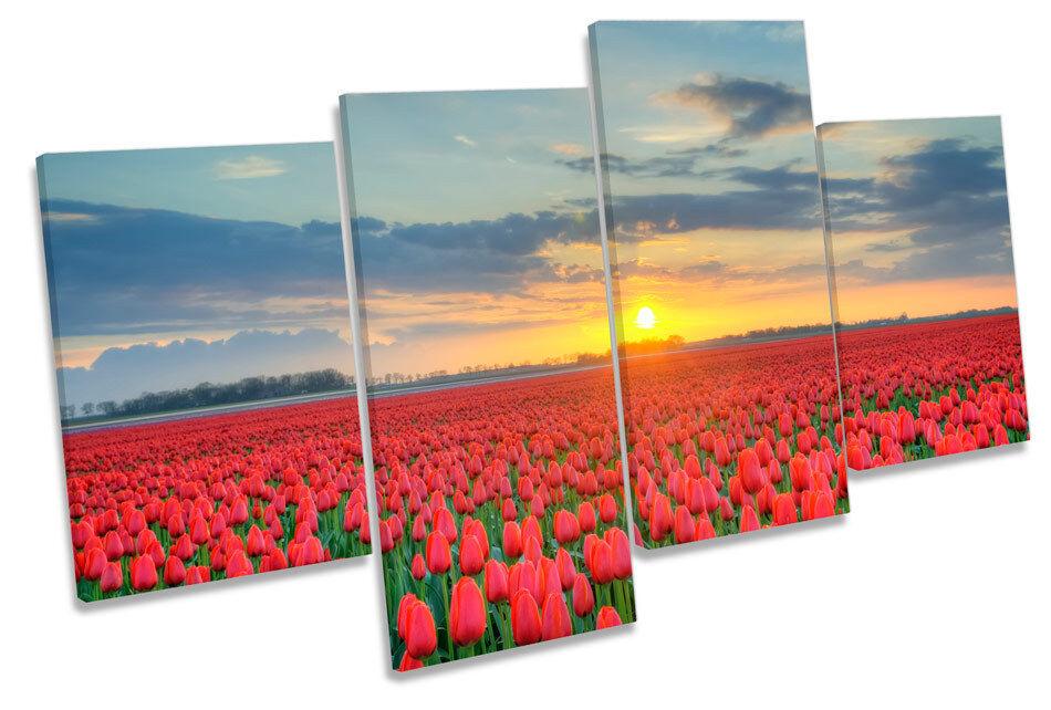 SUNSET PAPAVERI ROSSI campo campo campo Floreale Multi Canvas Wall Art Boxed incorniciato 8e3639