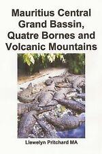 Foto Album: Mauritius Central Grand Bassin, Quatre Bornes and Volcanic...