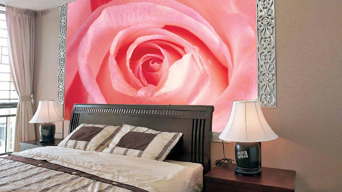 3D Die pink pink Wie seide 38 Fototapeten Wandbild Fototapete BildTapete Familie