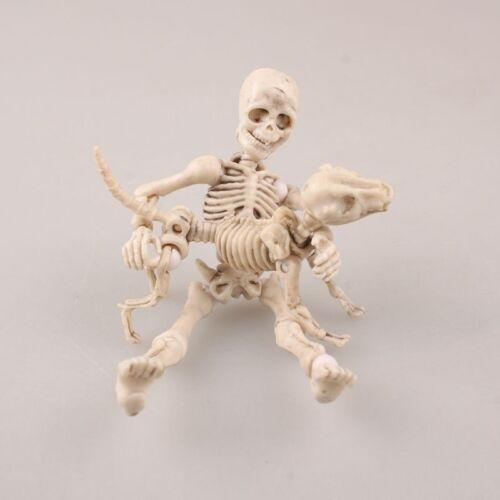Pose Action Figure Skeleton Dog Skeleton Adult Child Body Bones Model Dolls