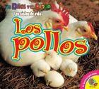 Los Pollos by Aaron Carr, Ruth Daly (Hardback, 2015)