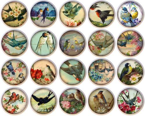 Set of 20 Vintage Birds By ETS CERAMIC Drawer Pulls Dresser Drawer Cabinet Knobs