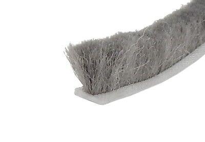 SP 6,7 x  5 mm x 100 m = 0,40 Euro//m Velourbürste grau Bürstendichtung