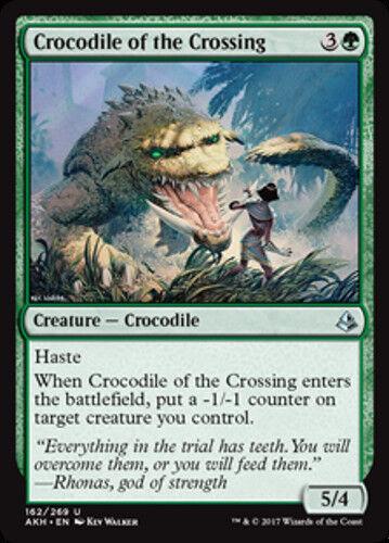 NEW 4x Crocodile of the Crossing MTG Amonkhet