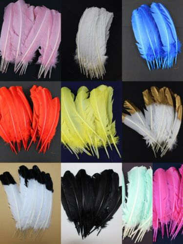 11 Color 12-14 inch Turkey Quill Feathers 20pcs Primary Wing Quill Large Feather