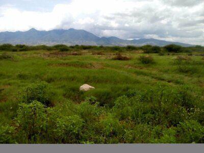 venta de terreno en Tlacolula de Matamoros, Oaxaca
