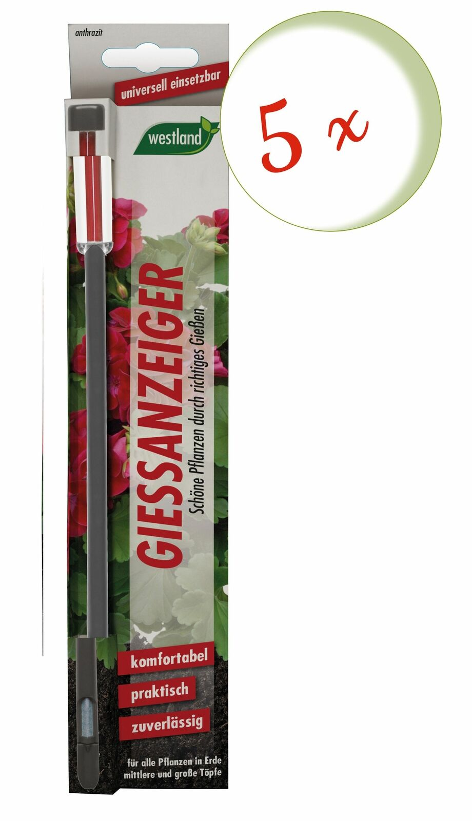 Savings Set: 5 X Westland Indicator For Flower Soil, 26 CM Anthracite