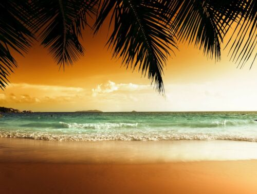 Paradise Beach Ocean White sand High definition poster decor Choose your Size