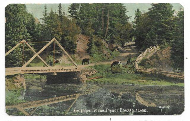 PRINCE EDWARD ISLAND  Pastoral Scene Bridge, Cattle, Trees Circa 1909