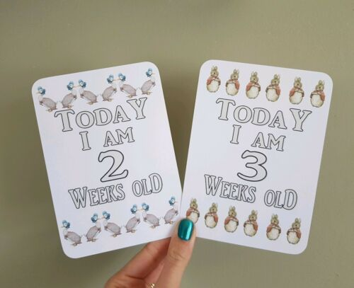Peter Rabbit Beatrix Potter Baby Milestone cards x 20 special Moments photo