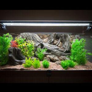 Paroi arrière de l'aquarium 3d pour la ligne de luxe Vision 450 Fif