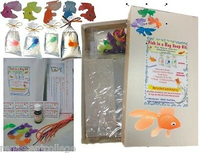 FISH IN A BAG SOAP Making Kit DIY 10 gifts Melt + Pour Natural Clear Soap Cute