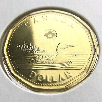 2013 $1 Uncirculated Canadian Loonie Dollar