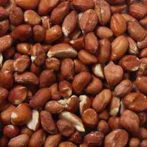 Trusty's Top Quality Premium Whole Bird Peanuts Nuts For Garden Wild Birds 25kg