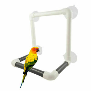 Pet-Bird-Suction-Cup-Toys-Paw-Grinding-Stand-Bath-Shower-Perch-Parrot-Budgie-Sup